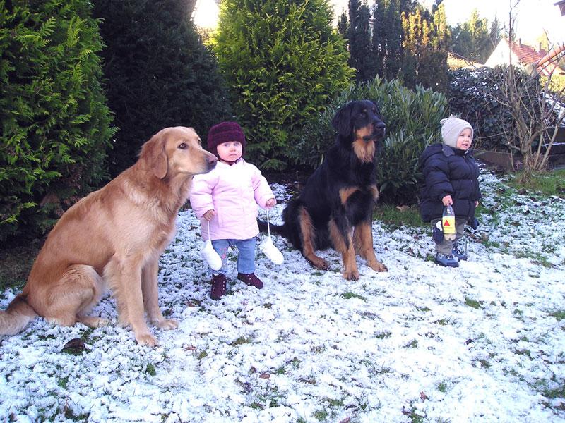 Hovawarte vom Düringer Moor - Franco und Franzy mit Enkelkindern